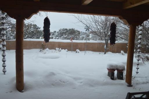 Snow View 1213