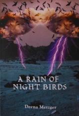 Rain Nt Birds
